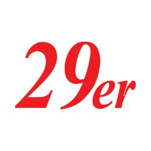 29er Class Logo